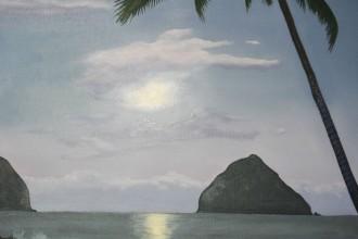 Clair de Lune à Hawaï #32